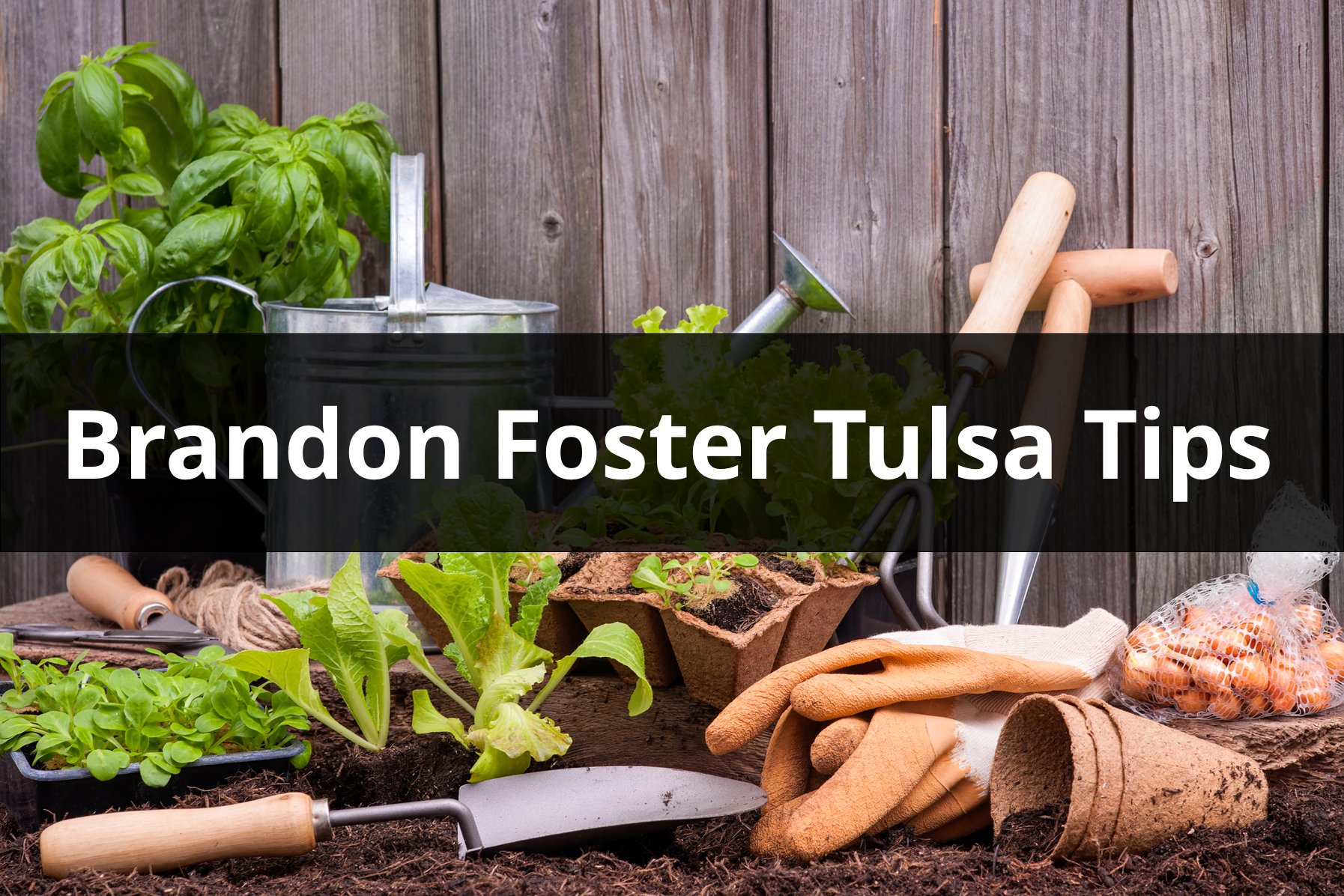 Brandon Foster Tulsa OK Backyard tips